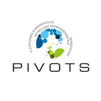 visuel logo actualités pivots