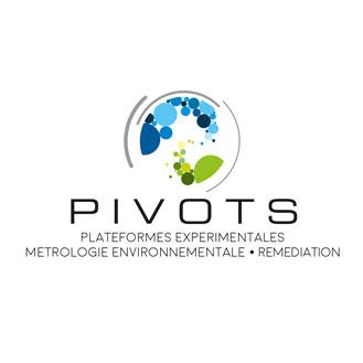 actualités pivots rencontre plateformes